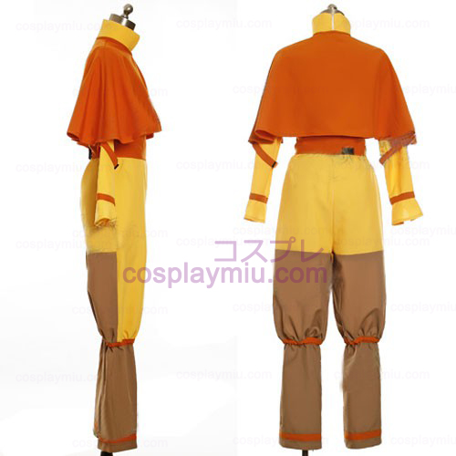 Avatar The Last Airbender Cosplay Aang Kostym