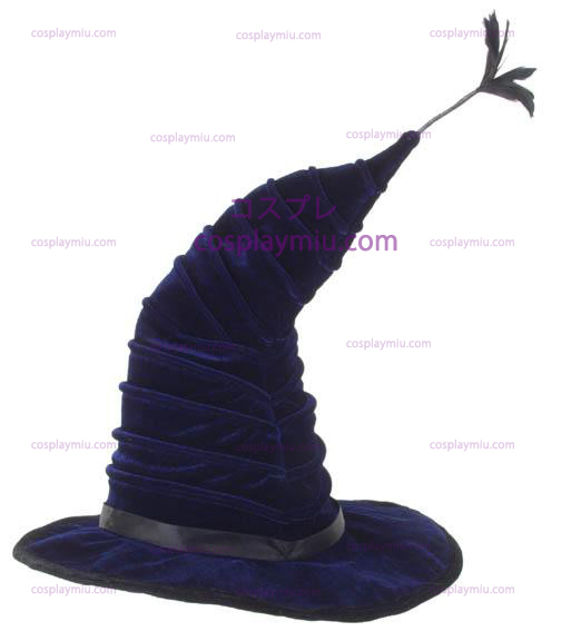 Harry Potter Madame Hooch Hatt